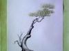 tužka + akvarel